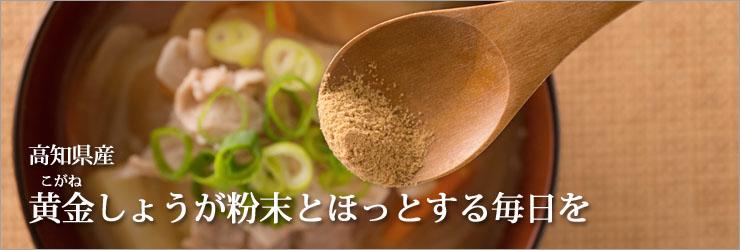 高知県産 黄金しょうが 粉末
