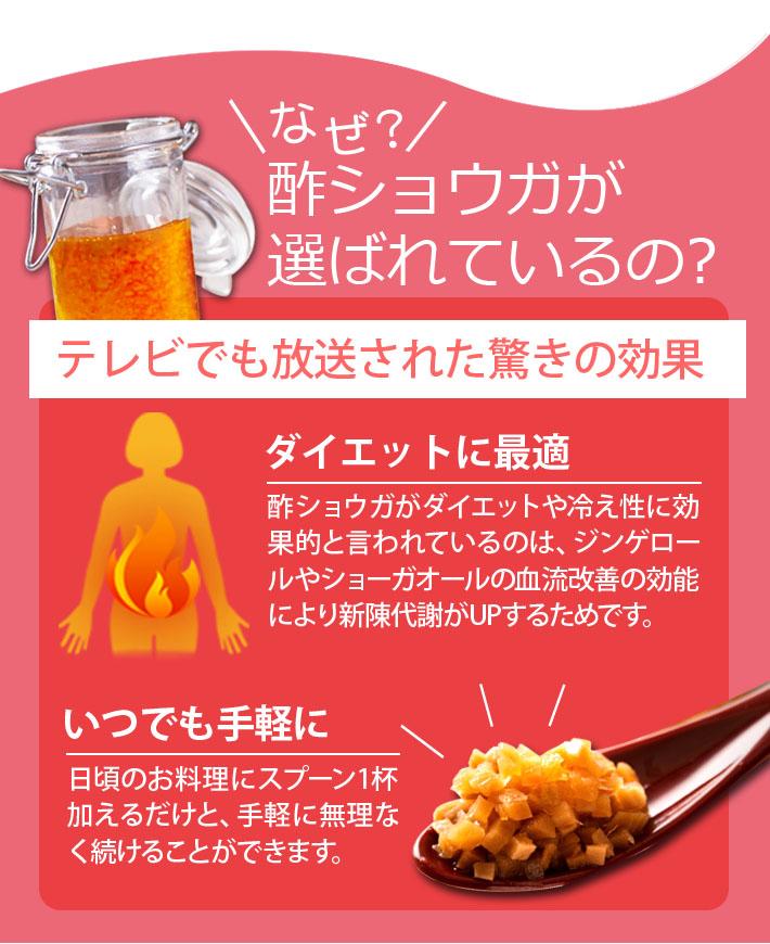 酢生姜セット