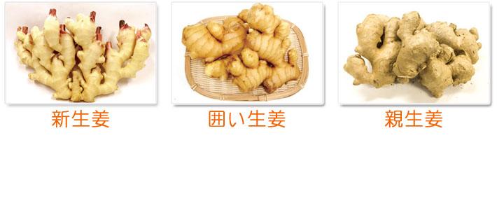 生姜の種類